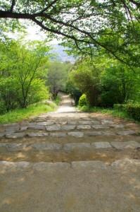 甘樫丘の園路(階段)