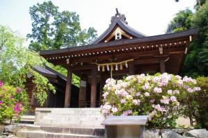 拝殿(飛鳥坐神社)
