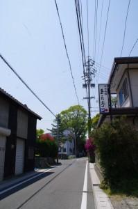 安永の常夜燈(5648)の手前