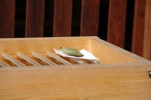 こどもの日に因んだお供え(山津見神社(諏訪神社))