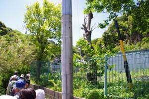 旧小浜小学校~大日和山