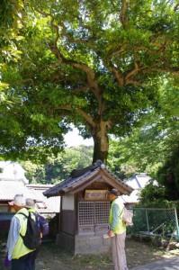 庚申堂(土宮神社)