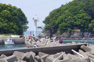 小浜漁港と日向(イルカ)島