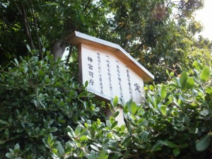 宇須乃野神社(縣神社を同座)