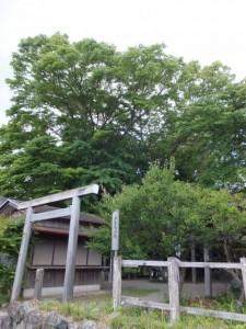 伊勢上座蛭子社(伊勢市八日市場町)
