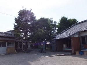 出雲御祖社の鳥居と浄久寺(伊勢市中島)