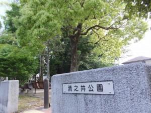 清之井公園(清野井庭神社の裏)