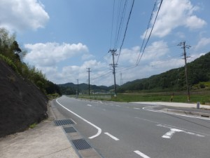 車道との合流(西外城田神社の先)