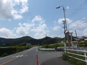 成川への分岐