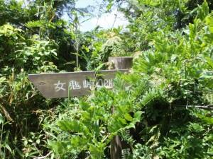 「熊野古道 女鬼峠 0.8km」の道標