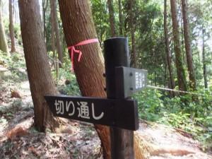 「切り通し・展望台」の道標(女鬼峠)