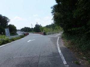 柳原橋付近の分岐(左は新田コース、右は旧道コース)