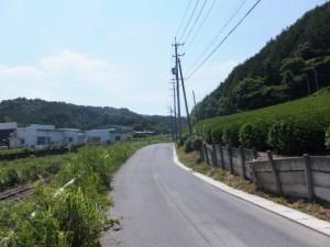 JR紀勢本線と茶畑(大台町栃原)