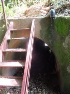 「バカ曲がり」の説明板下のトンネル