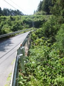神瀬橋(通称、眼鏡橋)