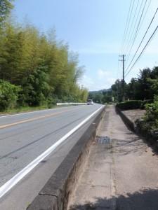 国道42号線沿いの熊野古道(歩道)