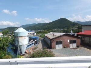 旅館 阿波屋付近の風景