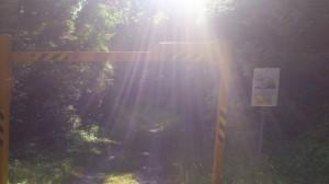 国道42号線からの分岐(石碑 三瀬谷園付近)の先のゲート