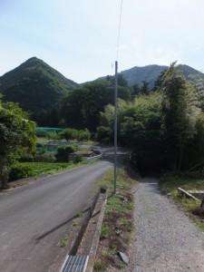 多岐原神社への参道
