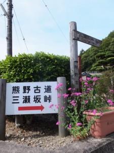 三瀬坂峠 三瀬川登り口