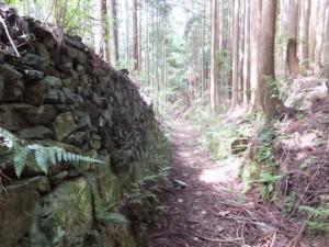 三瀬坂峠~里登り口