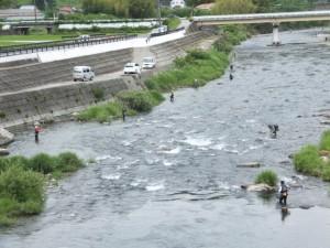 落瀬橋から望む大内山川の下流側、鮎釣り