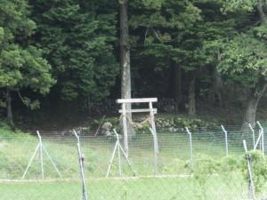 柳原公園から遠望する鳥居と小社