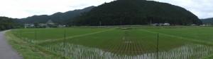 大内山川沿いからの眺望(國昌寺~駒ヶ瀬橋)