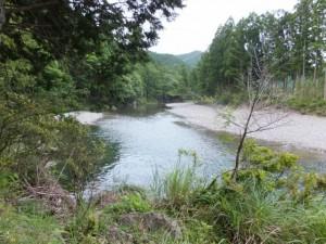 熊野古道 芦谷道から望む大内山川
