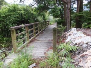 大内山川から離れ沢筋に架かる橋