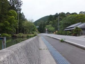 定坂公園手前の池