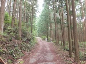 「熊野古道 新宮まで 102m」の道標~ツヅラト峠登口