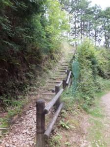 林道からツヅラト峠への階段