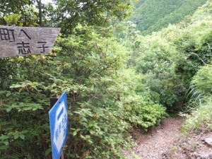 ツヅラト峠から志子への下り