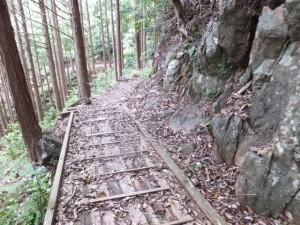 木の橋(ツヅラト峠~志子登り口)