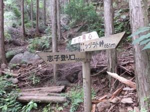 道標(ツヅラト峠~志子登り口)