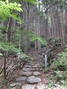 「ツヅラト石道登り口」付近