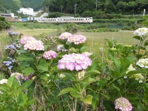 一石峠登り口付近から望む JR紀勢本線