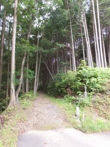 一石峠の登り口(加田側)