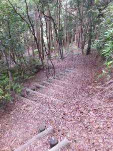 若宮神社への階段(佐甫道、サボ鼻水平道)