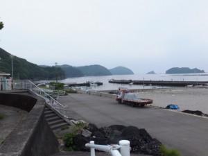 堤防から望む道瀬漁港