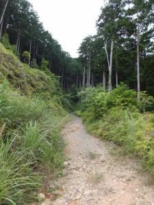 三浦峠(熊ヶ谷道)の登り口へ