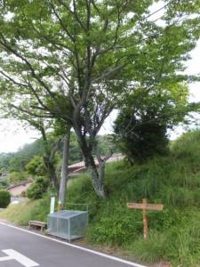 JR三野瀬駅付近の道標