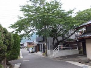トロッコ道と旧道が交差する辻のお地蔵さん