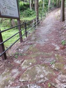 「熊野古道鷲下みち」の説明板付近に露出した石畳