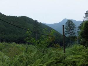 海山側から馬越峠へ
