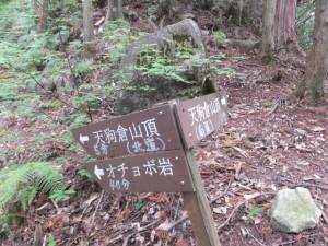 「←天狗倉山頂(北道)」「天狗倉山頂(南道)→」等の道標