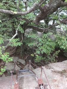 天狗倉山 山頂にある巨石から下へ