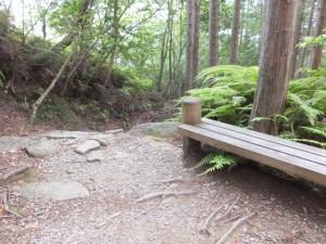 馬越峠から桜地蔵へ