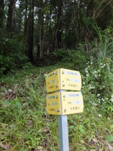 県道37号沿い(伊勢市朝熊町~鳥羽市堅神町)